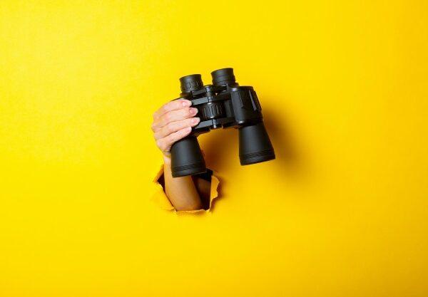 Отслеживаем сезонность: зачем бизнесу следить за трендами поисковых запросов